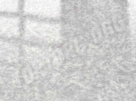 глянцевый ламинат elesgo 770422