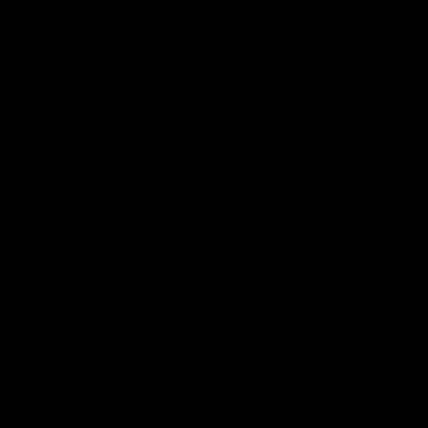 07. RAL 9017 (черный)